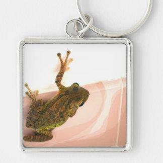 tree frog leg up stylized pink animal keychains