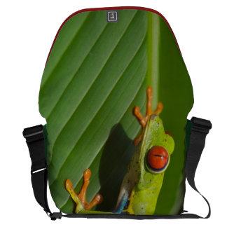 Tree Frog Messenger Bags