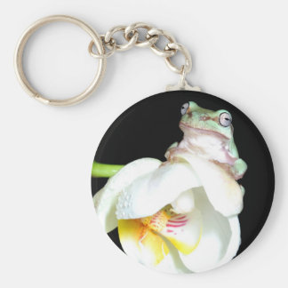 tree frog on orchid basic round button keychain