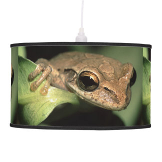 tree frog pendant lamps