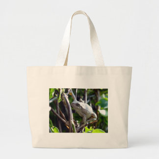 Tree Frog Photo by E L D Tote Bag