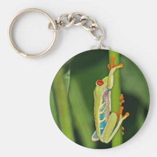 Tree Frog Photo Keychain