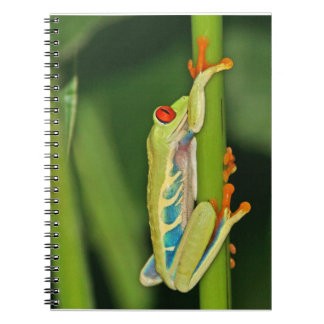 Tree Frog Photo Notebook