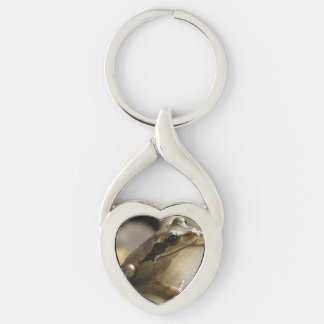 Tree Frog Silver-Colored Twisted Heart Keychain
