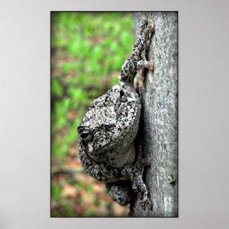 Tree Frog Print