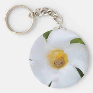 Tree Frog Resting in a Flower Basic Round Button Keychain