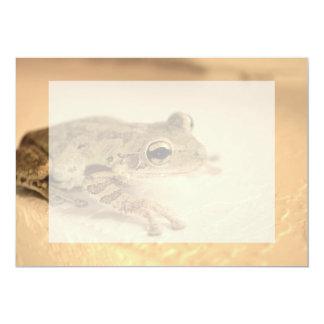 tree frog sepia looking right animal image invitations