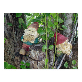 TREE GNOMES POSTCARD