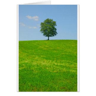 Tree in  a field card