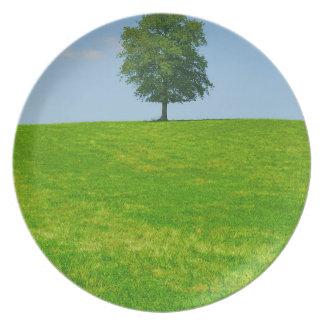 Tree in  a field dinner plate
