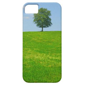 Tree in  a field iPhone 5 case