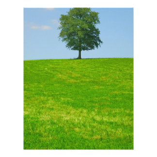 Tree in  a field letterhead
