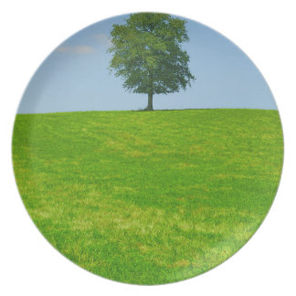 Tree in  a field plate