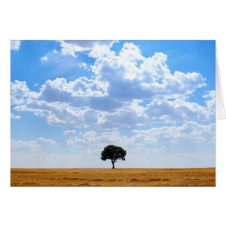 Tree in an harvested wheat field card
