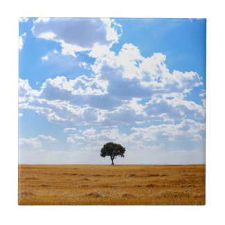 Tree in an harvested wheat field ceramic tiles