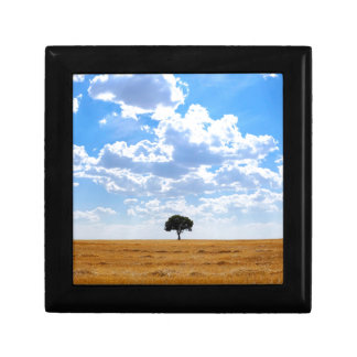 Tree in an harvested wheat field gift box