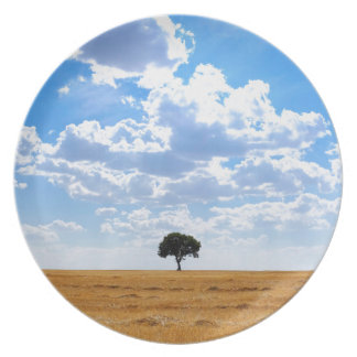 Tree in an harvested wheat field plates