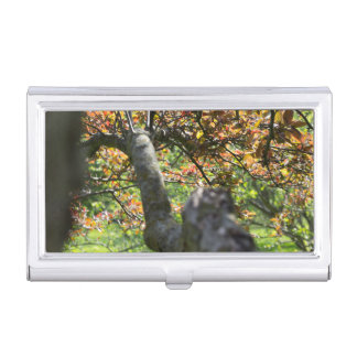 Tree in Autumn Photography Business Card Holder