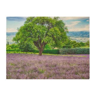 Tree in Lavender Field, France Wood Wall Art