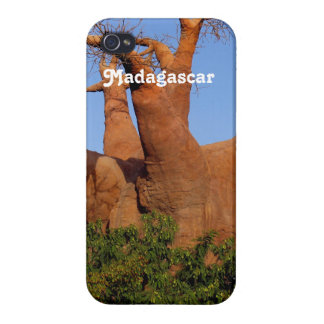 Tree in Madagascar iPhone 4/4S Cover