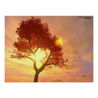 Tree In Sunset Poster