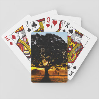 Tree in the Morning Poker Deck