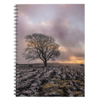 tree in the sky notebook