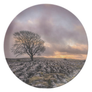 tree in the sky plate