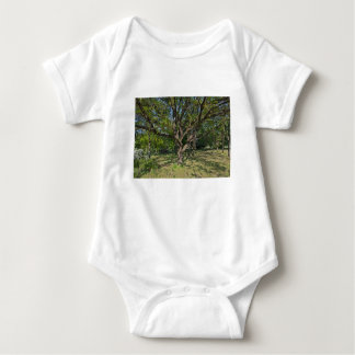 Tree in the springtime baby bodysuit