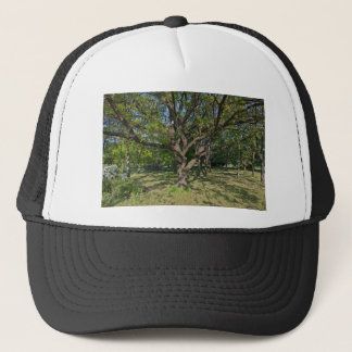 Tree in the springtime trucker hat