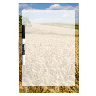 Tree In Wheat Field Landscape Dry Erase Board