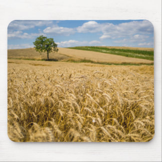 Tree In Wheat Field Landscape Mouse Pad