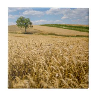 Tree In Wheat Field Landscape Tile