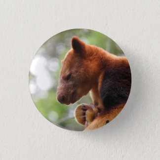 Tree Kangaroo Badge 1 Inch Round Button
