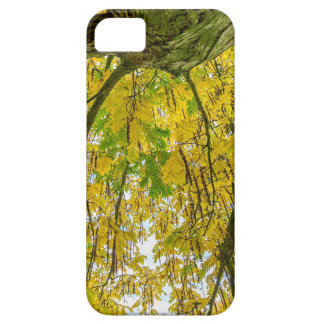 Tree leaves and branches from below in fall iPhone 5 covers