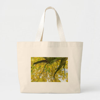 Tree leaves and branches from below in fall large tote bag