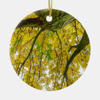 Tree leaves and branches from below in fall round ceramic ornament