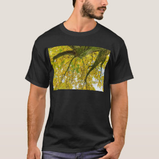 Tree leaves and branches from below in fall T-Shirt