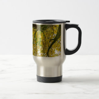 Tree leaves and branches from below in fall travel mug