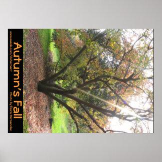 Tree Light Ray Autumn's Fall Poster
