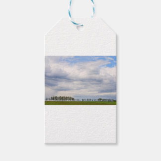 Tree Line Gift Tags