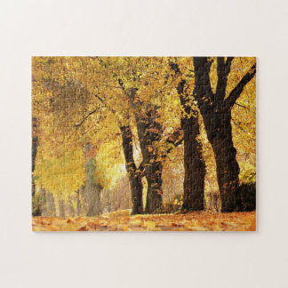 Tree Line In Autumn Jigsaw Puzzle
