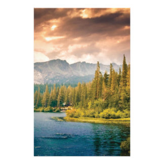 tree line in the wilderness stationery