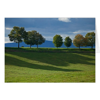 tree line note card
