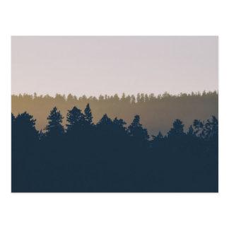 Tree line silhouette postcard