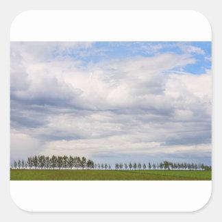 Tree Line Square Sticker