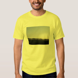 Tree Line T-shirts