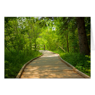 Tree-Lined Path Note Card