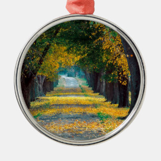 Tree Louisville Roadway Kentucky Silver-Colored Round Ornament