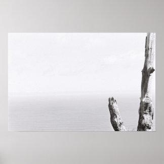 Tree Minimalistic Monochrome Kodak Film Poster